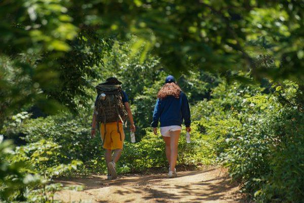 vandrar i skogen, soligt och varmt, par